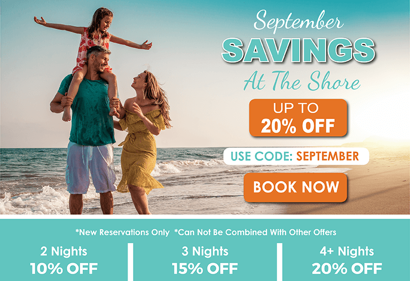 Up to 20% Off. Use Code: September